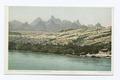 The Needles Mountains, Colorado River, Arizona (NYPL b12647398-69574).tiff