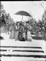 The Qing Dynasty Cixi Imperial Dowager Empress of China with Attendants.PNG