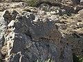 The Serpent of Santorini (1037871544).jpg