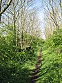 The Trackbed of the former High Dyke Branch - geograph.org.uk - 1406235.jpg