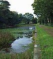 The remains of the ornamental lake Wortley Hall - geograph.org.uk - 1002972.jpg