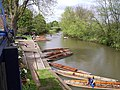 The river at the Cherwell Boathouse - geograph.org.uk - 218869.jpg
