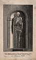 The skeleton of Elizabeth Brownrigg, displayed in a niche at Wellcome V0013496.jpg