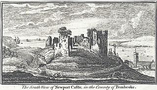 The south view of Newport Castle, in the county of Pembroke