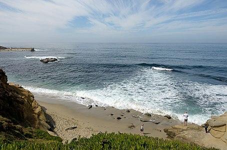 The surf on La Jolla beach in California