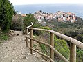 The trail to Vernazza (2115875220).jpg
