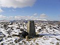 The trig point on The Wiss - geograph.org.uk - 674667.jpg