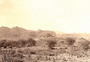 Tihamah - The Tihamah coastal plain in the south of Yemen, 1931