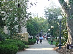 Path on North Campus leading to the Arch and downtown Athens
