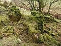 Trevendick - geograph.org.uk - 705608.jpg