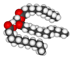 Structure of a triacylglycerol lipid.