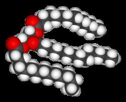 Structure chimique d'un triglycéride (Wikipédia)