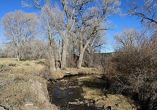Trinchera Creek