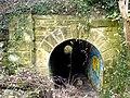 Tunnel beneath rail track - geograph.org.uk - 727017.jpg