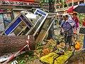 Typhoon Mangkhut, nature disaster, Tai Po, Hong Kong (49902695763).jpg