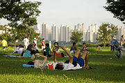 http://upload.wikimedia.org/wikipedia/commons/thumb/6/64/Typical_evening_in_Han_river_park_Seoul.jpg/180px-Typical_evening_in_Han_river_park_Seoul.jpg