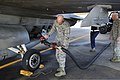 U.S. Air Force Col. Clark Quinn, the vice commander of the 20th Fighter Wing, attaches a fuel hose to an F-16 Fighting Falcon aircraft as Airman 1st Class Jonathan Hinesley, right, a fuels distribution operator 131024-F-CX352-073.jpg
