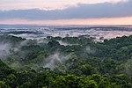 USAID Measuring Impact Conservation Enterprise Retrospective (Guatemala; Rainforest Alliance) (40259253082).jpg