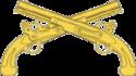 USAMPC-Chi cường-Insignia.png