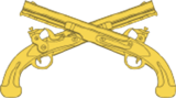 USAMPC-Branch-Insignia