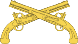Combat support - Image: USAMPC Branch Insignia