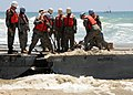 US Navy 080724-N-1424C-314 olidiers flex the Army Trident pier at Gold Beach during Joint Logistics Over-The-Shore (JLOTS) 2008.jpg