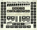 US Navy Uniform Insignia.png