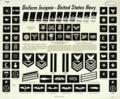 US Navy Uniform Insignia.png