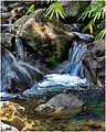 Un rio in Salazie, Réunion - panoramio.jpg