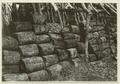 Utgrävningar i Teotihuacan (1932) - SMVK - 0307.g.0109.tif