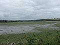 View from Inchydoney Island - geograph.org.uk - 499489.jpg