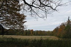 View of Mt Greylock from Arrowhead, Pittsfield MA.jpg