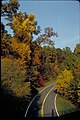 Views of George Washington Memorial Parkway, District of Columbia (5c3317d9-1d66-41f2-8699-0ab9b4ae3c9a).jpg