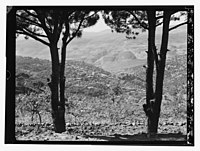 Village of Hasbaya, Habaga (above?) foot of Mt. Hermon LOC matpc.13122.jpg