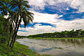 Village river.jpg
