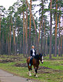 Vyksa. Riding at leasure in Town Park.jpg