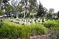 Wagga Wagga War Cemetery.jpg