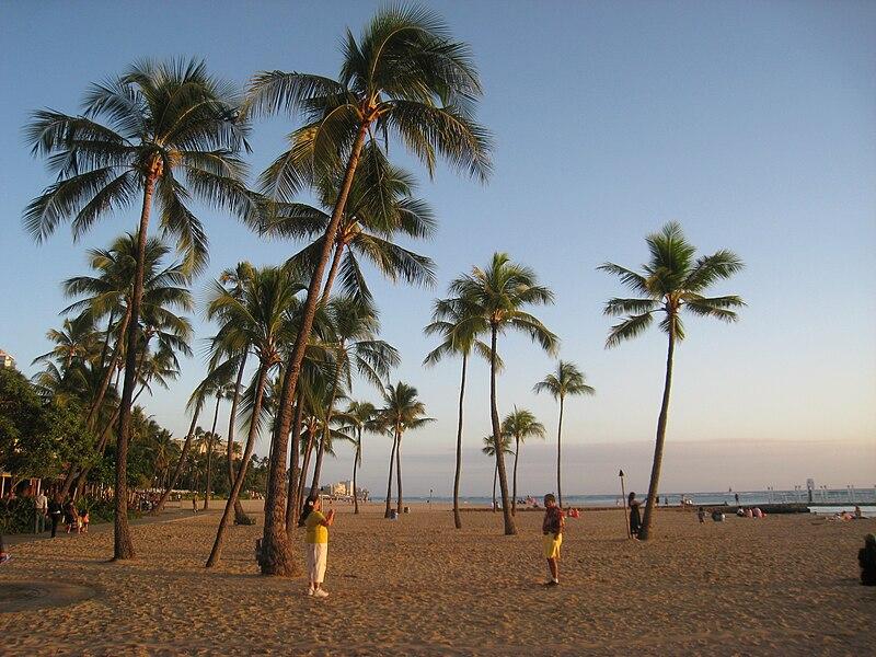Fichier:Waikiki Beach 12-09 - IMG 2496.JPG