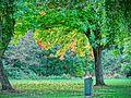 Walking in the glen 'Dalton le Dale' (10203541594).jpg