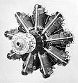 Walter Pegas III-M2 (1934) 1.jpg
