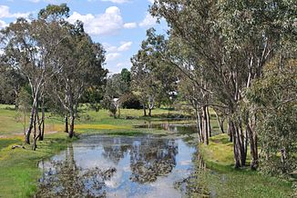 Wannon River in Cavendish
