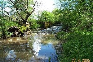 Cobbins Brook - Weir on Cobbins Brook at Warlies Park, Upshire.