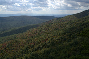George Washington and Jefferson National Forests - White Rocks on Little Sluice Mountain in George Washington National Forest.