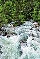 White water in the Savica.jpg