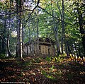 Woodland Classroom in Rosewell, Rear View, Scotland.jpg