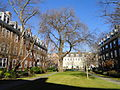 Yard - Harvard Business School - DSC02995.JPG