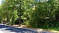 Zehistaer Straße Pirna (41992319810).jpg