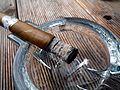 Zigarre im ascher.jpg