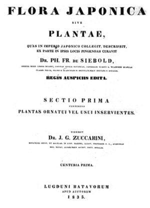 Joseph Gerhard Zuccarini - Joseph Gerhard Zuccarini