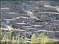((( نمایی از روستای کهلان مراغه))) - panoramio (1).jpg